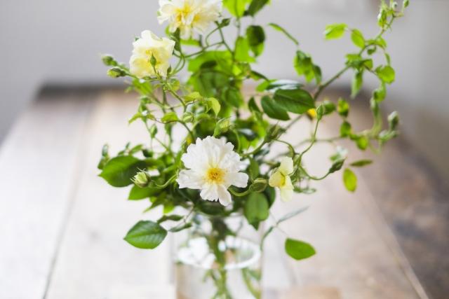 テーブルに白い花