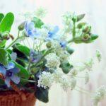 生花は確実に運が良くなるアイテム!たとえ一輪の花でも効果は絶大!